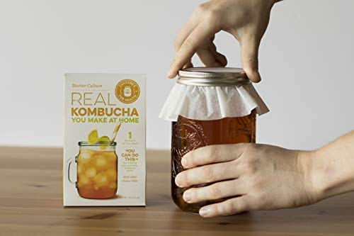 Kombucha Starter Culture open